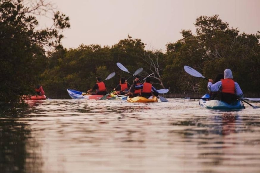 Guided Kayak Tour - Abu Dhabi