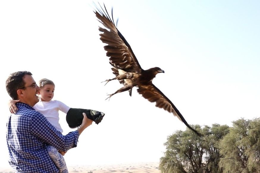 Dubai Falconry Safari